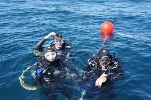 Diving off Portimao 2